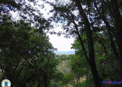 Serra do Pé do Morro - Macaúbas (16)